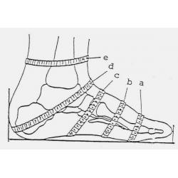 PGM How to Measure Your Foot